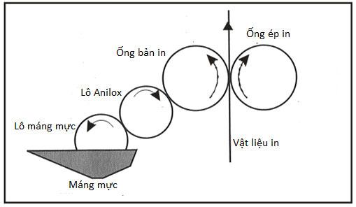 Hệ thống cấp mực hai lô: lô máng mực và lô anilox