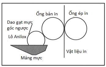 Hệ thống cấp mực một lô loại máng mực hở: trục anilox và dao gạt mực